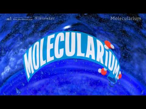 New Show at 'Imiloa: Molecularium Keiki Planetarium Show!