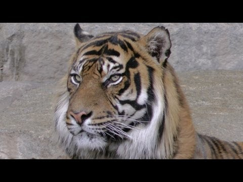 Besuch im Tierpark Berlin