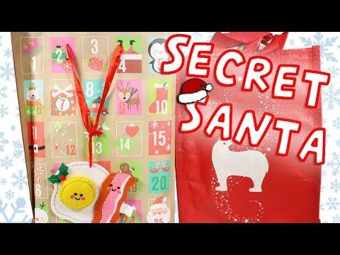 Secret Santa Gift Swap Surprise Package!!! Random Blind Bag Box + New Animal?! + MORE!