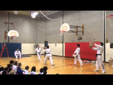 Taekwondo demo at Holland Hill School