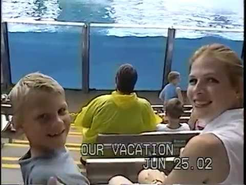 Matthew's Sea World Adventure