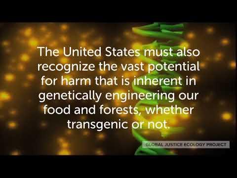 European Court: Genetically Engineered Organisms are GMOs