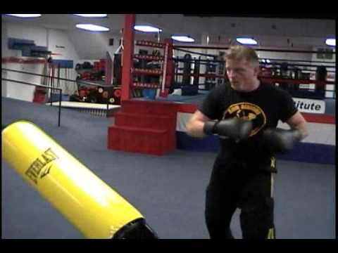 Everlast Punching Bag For You Watching