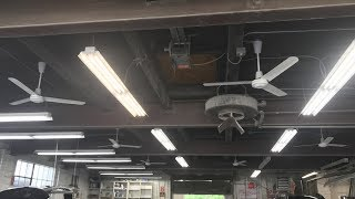 6 Leading Edge/Marley Industrial Ceiling Fans at an Auto Shop