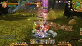 Ragnarok Online 2 TH: Moonlight Flower DNA Hunt (Assassin)