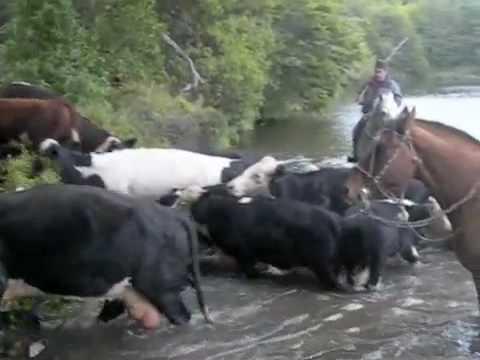 Horse Riding Patagonia 4