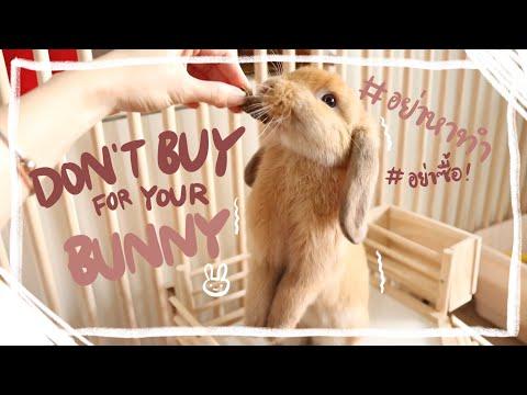 Ep.5 สิ่งที่ไม่ควรซื้อให้กระต่าย ถ้าไม่อยากเสียดายทีหลัง BunnyTTCoupe   Joyjee Loveberry