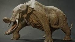 10 Tiere, die glücklicherweise ausgestorben sind!