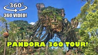 Pandora World of Avatar 360 Degree VR Tour Walt Disney World Animal Kingdom