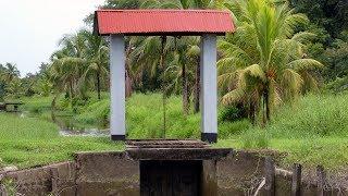 Commewijne Tour - Access Suriname Travel