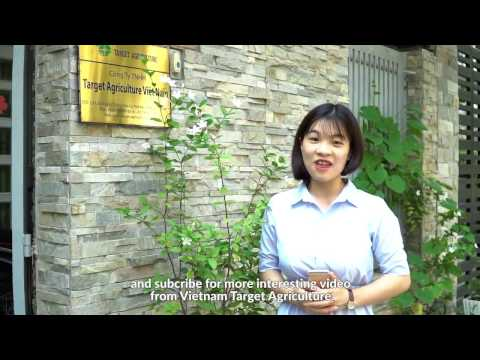 Vietnam Target Agriculture - Organic Farming and Fair Trade Training Program 2017
