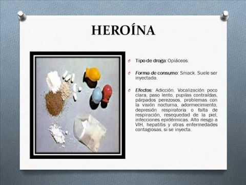 Tipos de drogas youtube for Tipos de cactus y sus nombres comunes