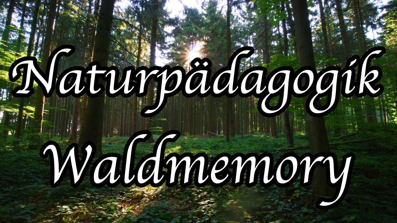 Waldmemory