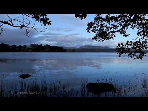 RELAXATION Tranquil Nature Sounds Without Music-Lapping Water-Soothing Bird Song-Natural Meditation