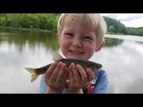 10 Species Fishing Challenge - Shiners, Bass, Catfish, Carp, Bluegill, Snakehead, Sunfish & More
