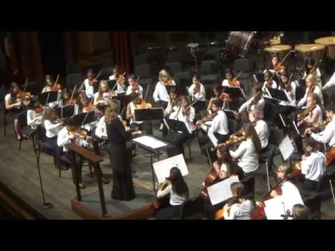 COLLEGE OF MUSIC 75 ANNYVERSARY FSU SUMMER MUSIC CAMPS - Chamber Orchestra