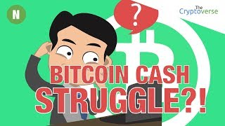 Bitcoin Cash 🤔 Struggling? Hard Fork Network Split Post Mortem 💀 Segwit Update (The Cryptoverse)
