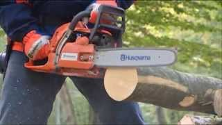How to work with Chainsaws - Felling Trees (part 1)