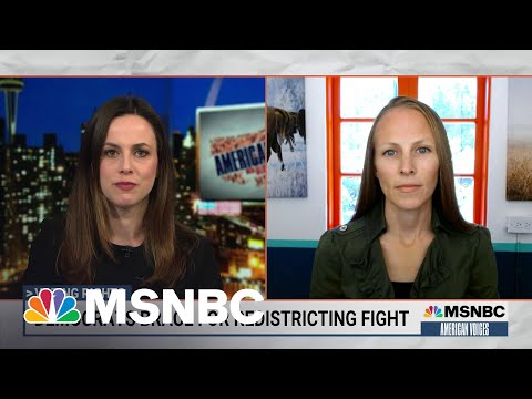 Fighting Gerrymandering: The Next Big Battle Over Voting Rights   American Voices   MSNBC