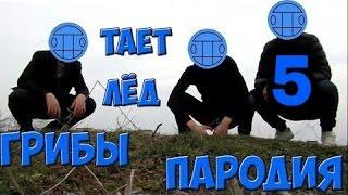 √ 5 КРУТЫХ  ПАРОДИЙ НА ПЕСНЮ МЕЖДУ НАМИ ТАЕТ ЛЁД (ГРИБЫ)