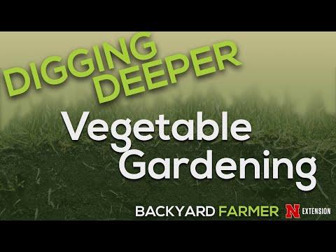 Digging Deeper  Vegetable Gardening