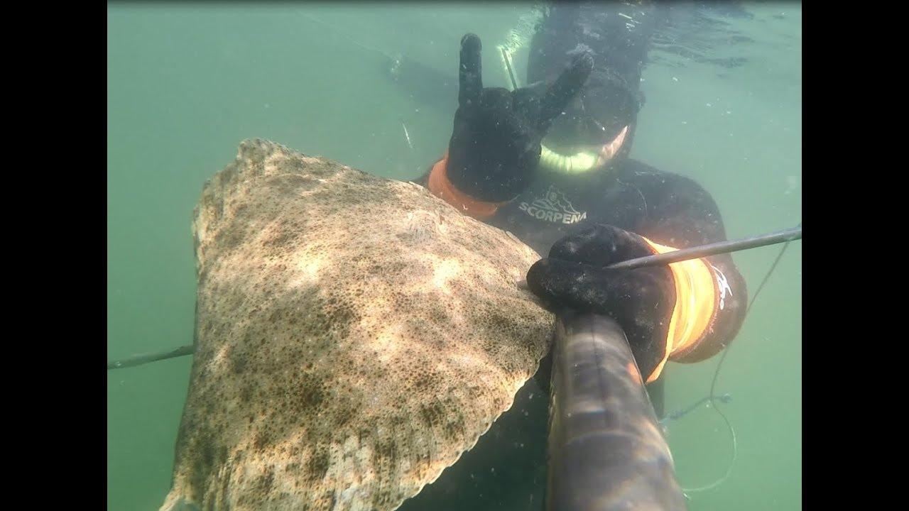 Подводная охота на калкана в Азовском море