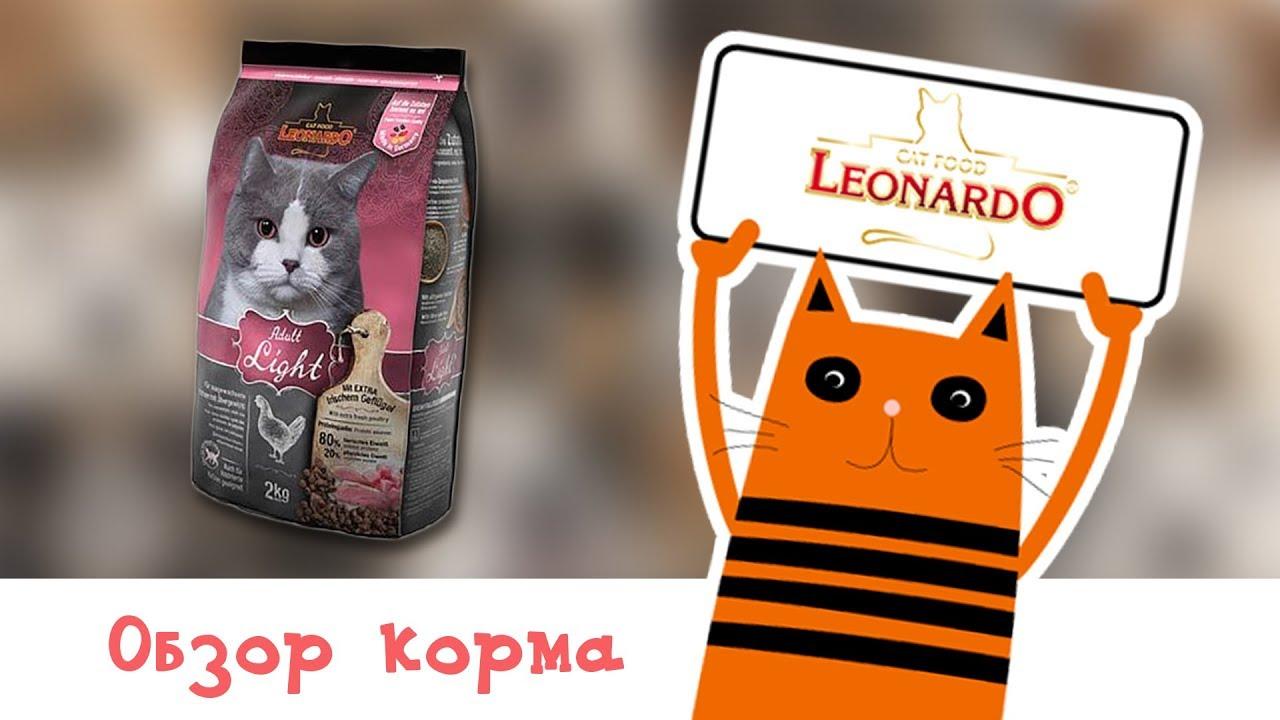 Для того, чтобы купить корм для собак belcando (белькандо), bewi dog(беви дог), dog land (дог ленд)и корм для кошек leonardo(леонардо), bewi cat( беви кет) просто оформите заказ и заполните форму. Действует специальная программа для питомников заводчиков. Через наш сайт вы можете.