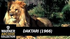 Daktari 1966 tv show - Free Music Download