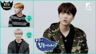 [ARABIC SUB] ASK IN A BOX  BTS 방탄소년단 'Blood Sweat & Tears피 땀 눈물'