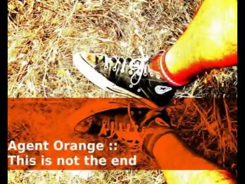 this is not the end - Agent Orange - Lyrics