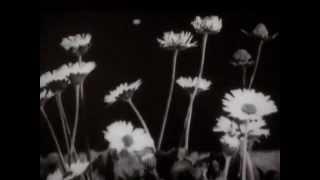 Autour du sommeil, extrait 2 : Le Bâillement. Un film de Virgile Novarina (12 min, 2005)