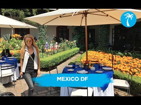 MEXICO DF |  RoviTravel by MonRovi