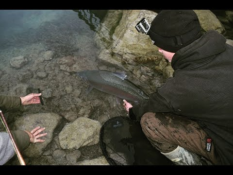 Twizel Canal Fishing Compilation.