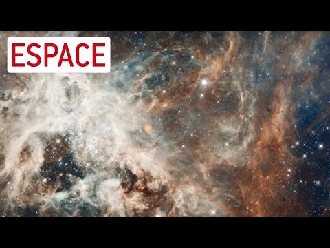 Les derniers résultats de la mission GAIA - Interview du Mag de la science