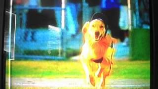 Opening to Snow Dogs 2002 VHS