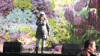 День поселения Отрадненское 2011