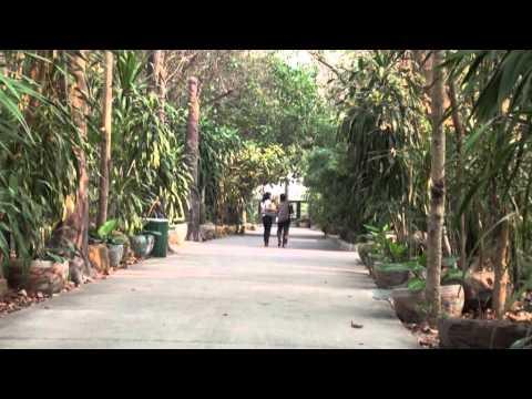 วัดป่าธรรมอุทยาน บ้านสำราญ ตำบลสำราญ อำเภอเมือง จังหวัดขอนแก่น ชุดที่ 2