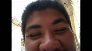 paupau 3 viendo videos graciosos 2 XD