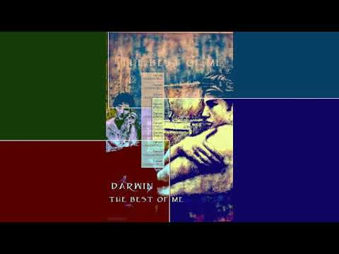 Darwin The Best Of Me  Acoustic version featuring  Bello