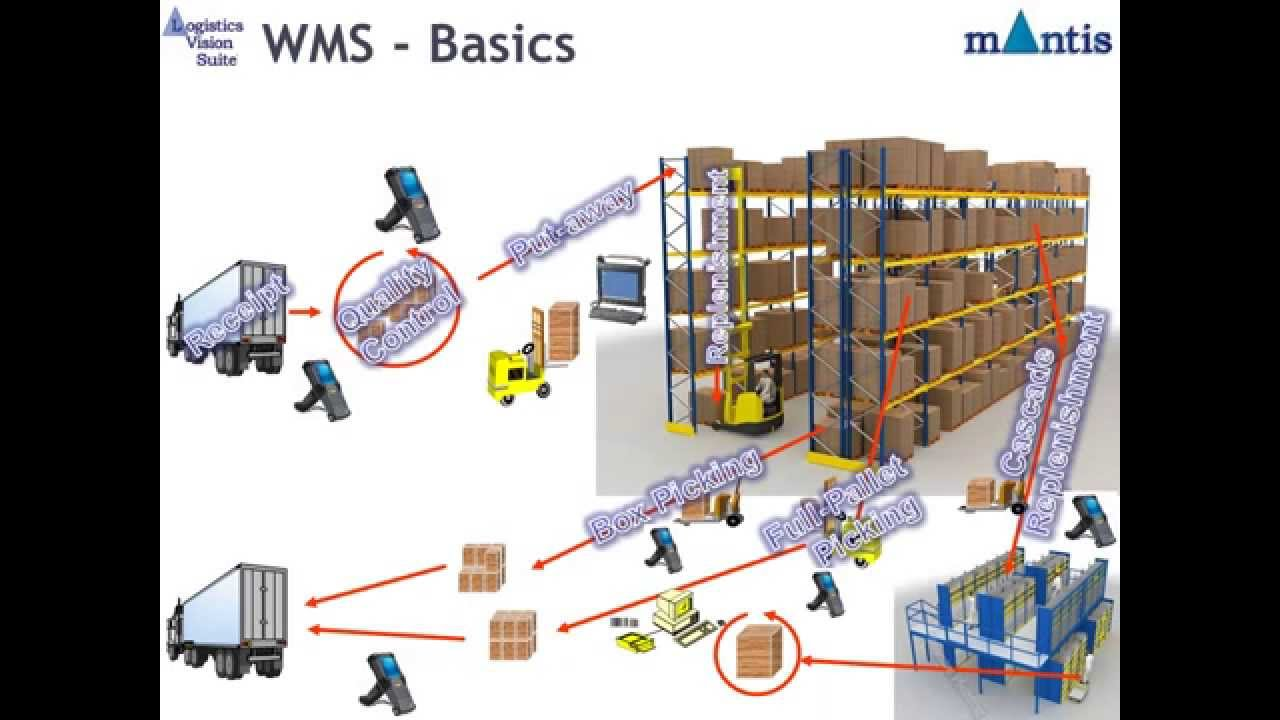 warehouse management systems wms Definition warehouse management system - wms meaning, explanation and description, comparison of software types.