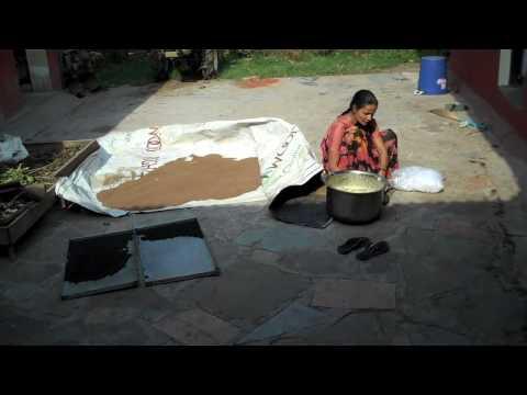 Preparing plants and herbs to produce ayurvedic medicine.