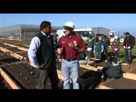 Australian College of Agriculture & Horticulture - Community Gardens Project 1
