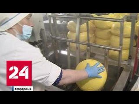 """""""Гудроновый сыр"""": россиянам продают аллергены под видом нормальных продуктов"""