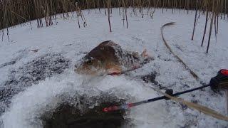 Зимняя рыбалка на Новый год 2016 / Winter fishing New Year
