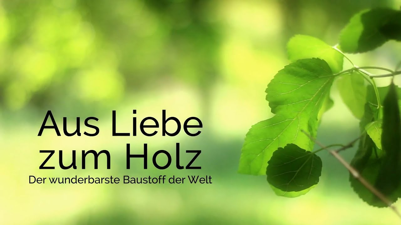 Albert Haus - Aus Liebe zum Holz -Fertighaus Träume ...