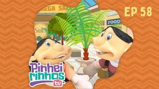 Pinheirinhos TV   Episódio 58   IPP TV   Programa na íntegra