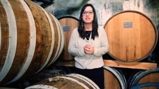 VISITES THÉMATIQUES DANS LE VIGNOBLE DE COGNAC par Vanessa Dejarnac