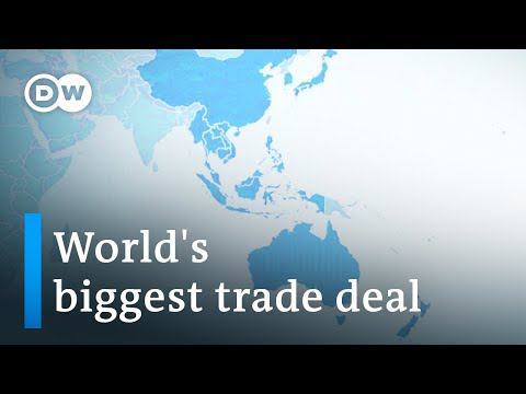China and 14 partners sign world's biggest trade deal without US | DW News