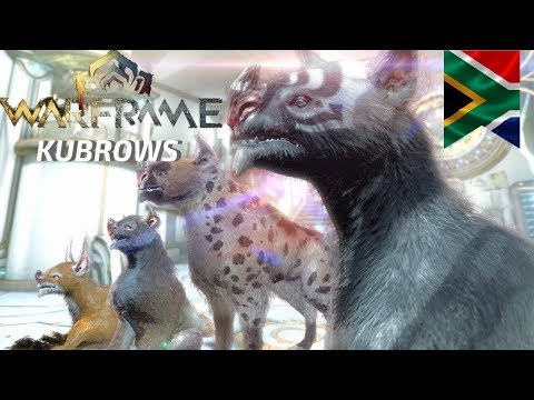 #Warframe   How To Get A Kubrow   What Makes A Kubrow Valuable   Kubrow Guide