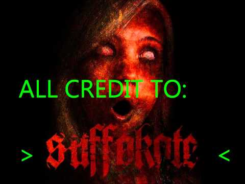 Suffokate ~ The Skies Were Filled With Fire mp3